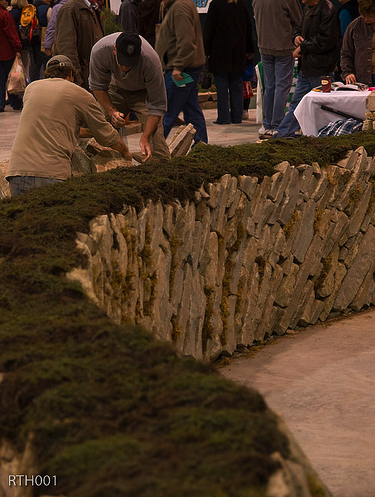 Ground Covers Unlimited supplied the Thyme Top for our demonstration On-the-Bias Wall